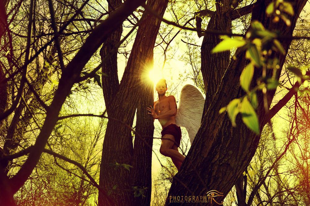 Photo in Random #angel #light #sky #skyfall #man #france