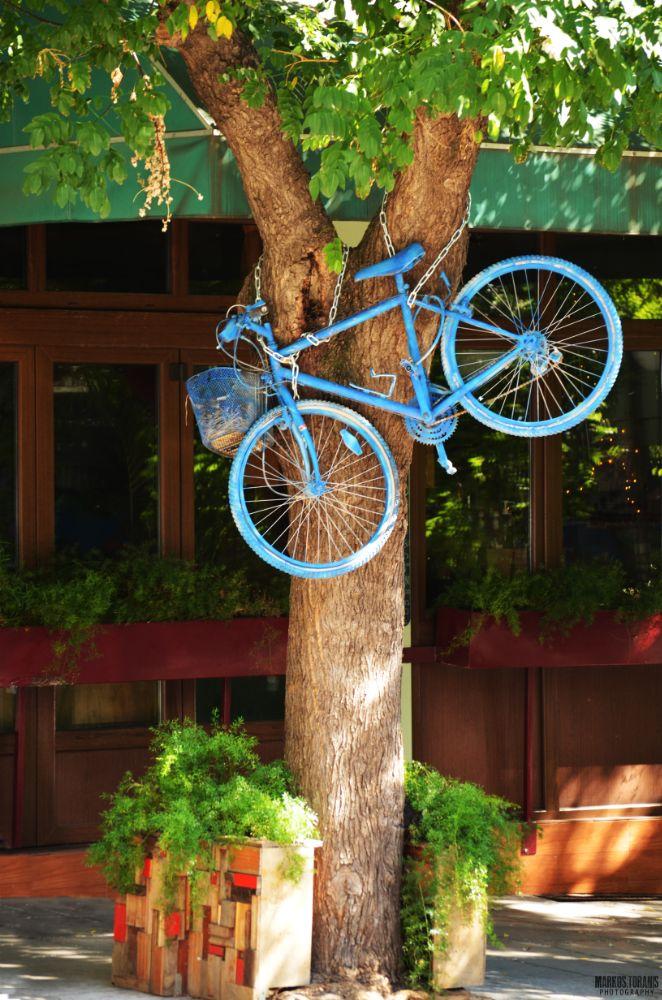 Photo in Urban #street #urban #bicycle #tree #thessaloniki #greece #nikon #d5100 #markostoranisphotography