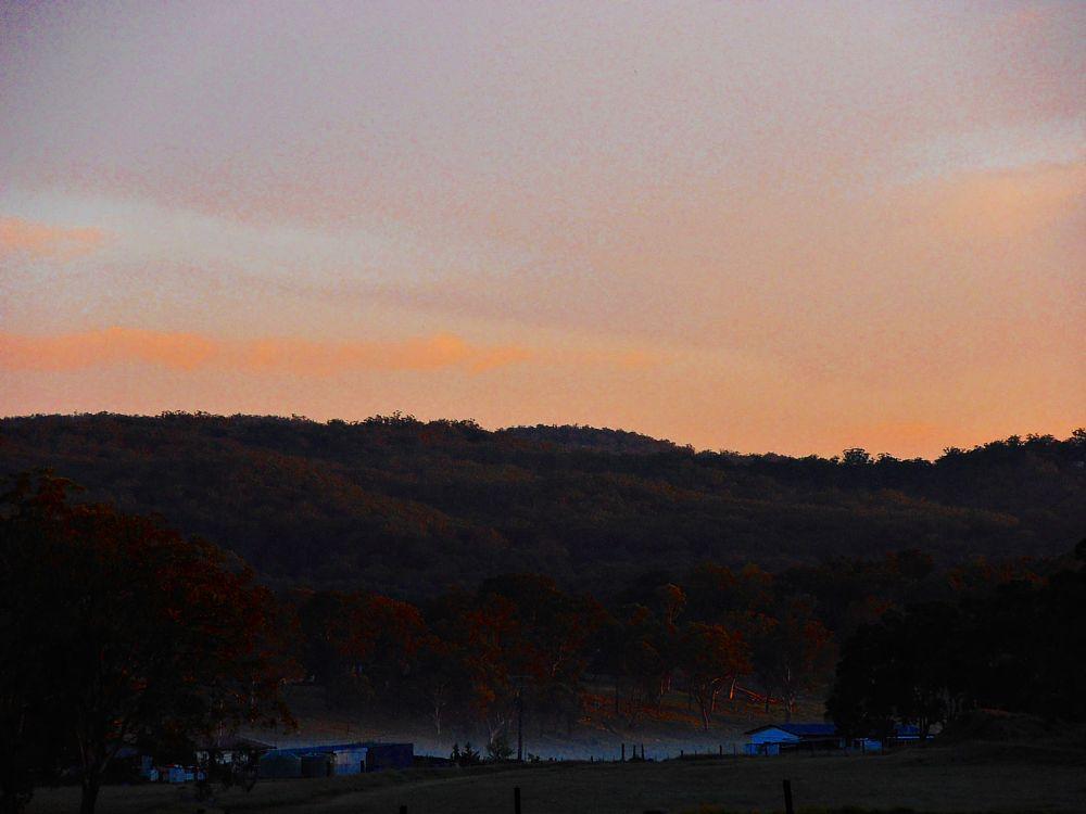 Photo in Rural #morning #sunrise #russet #sky #trees #ranges #cool #mist #golden #australia