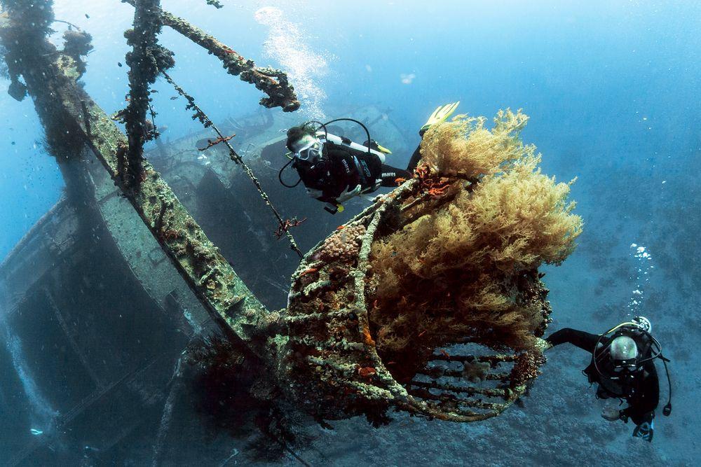 Photo in Underwater