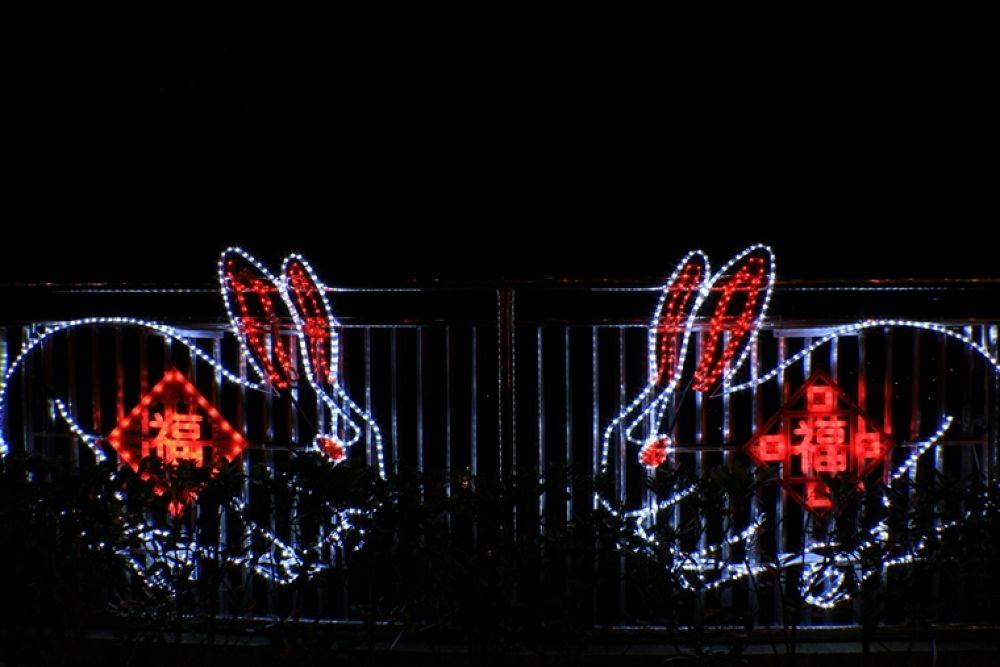 Photo in Random #happy #rabbit #year!!