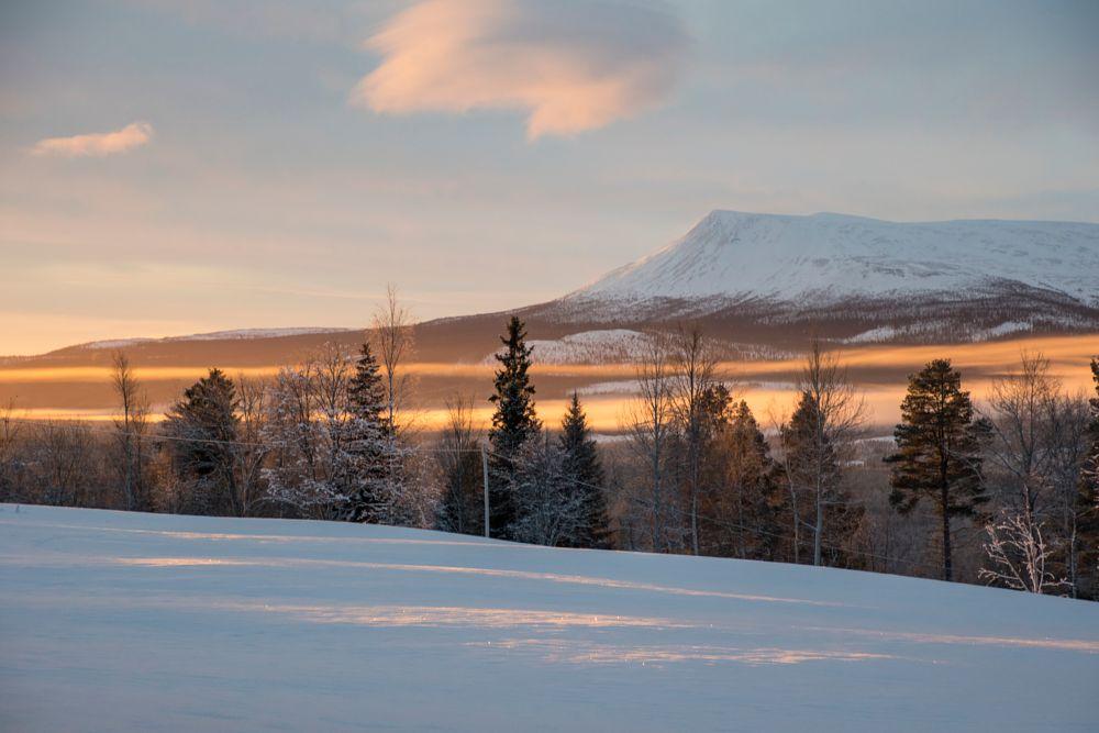 Photo in Landscape #sky #mountain #hill #nature #landscape #sweden #hede #härjedalen #jämtland #husberget #winter #cold #morning #snow #mist #cloud #white #blue #trees #tree #forest #woods #pine