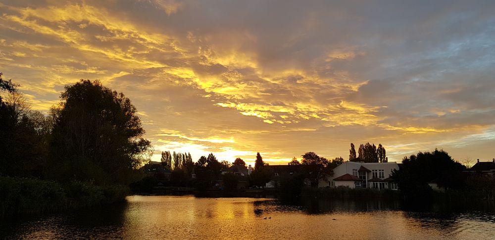 Photo in Nature #sunrise #gold #morning