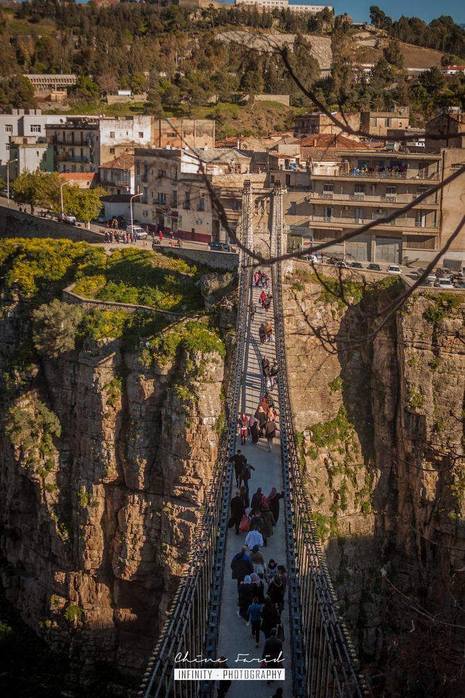 Photo in Architecture #pont #libre #constantine #alger #algeria #chine farid