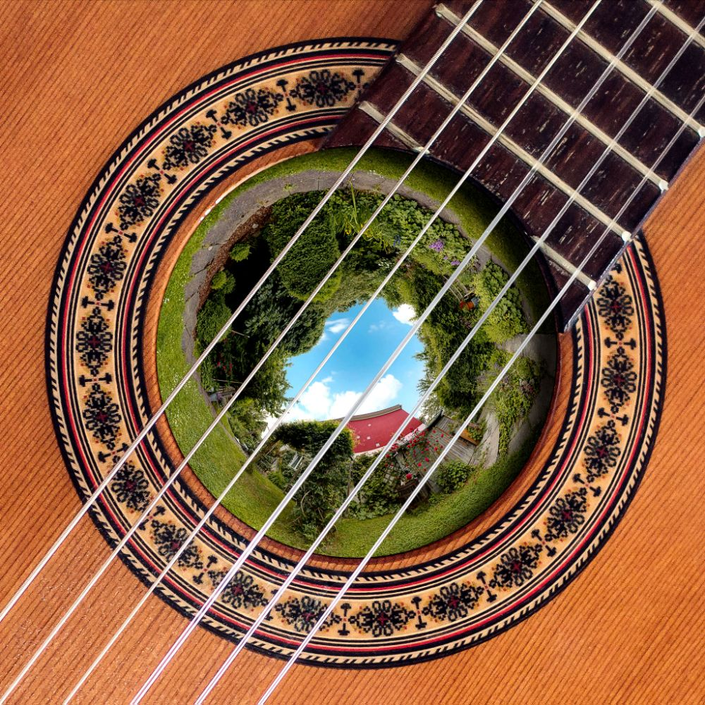 Photo in Random #guitar #picture #hole #garden #nature #colage