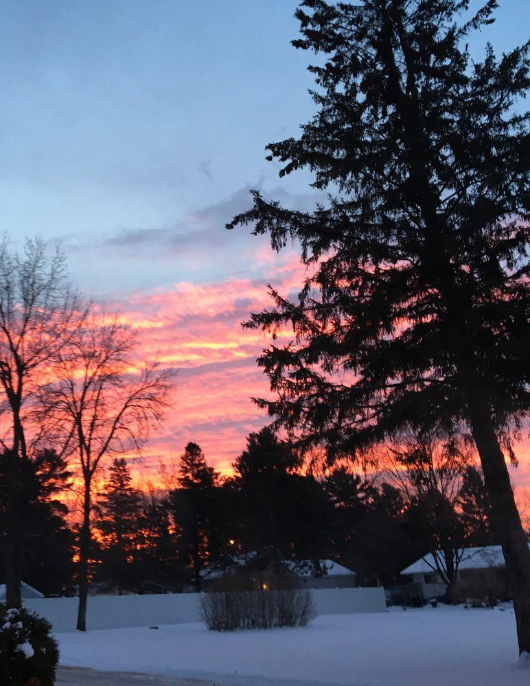 Photo in Nature #sunrise #walk #morning #tree #winter