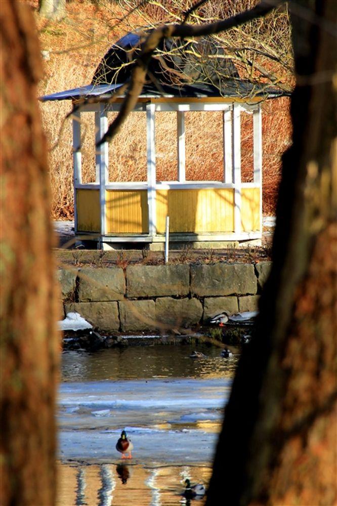 Photo in Random #rönneå #ängelholm
