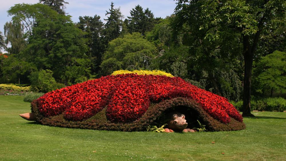 Photo in Nature #claude ponti #jardin des plantes de nantes #sculpture végétale #fleur