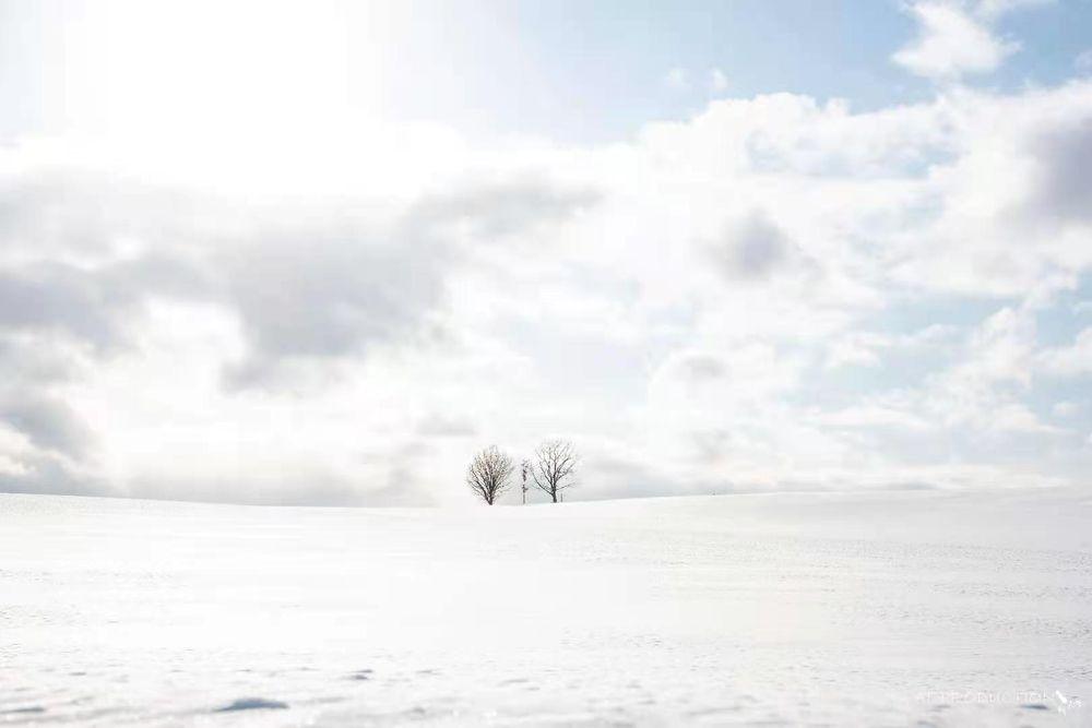 Photo in Random #photographer #biei #biei cho #visitjapan #nikon hong kong #nikon japan #hokkaido #北海道 #family #snow #natural