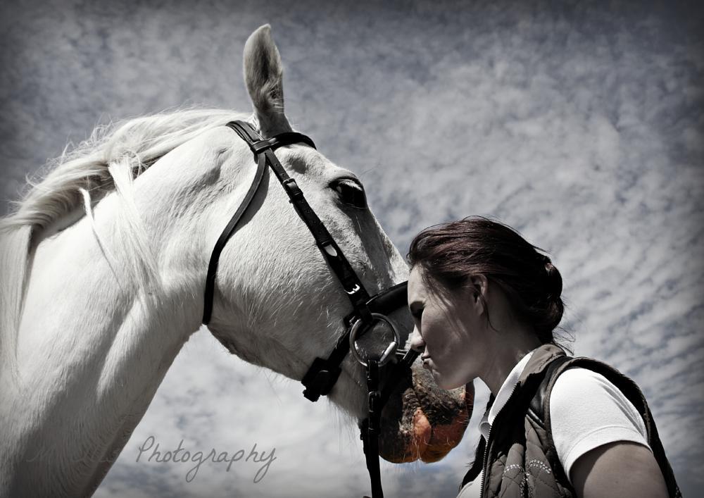 Photo in Random #equine #horse #horses #horse rider #rider #riding #horses head