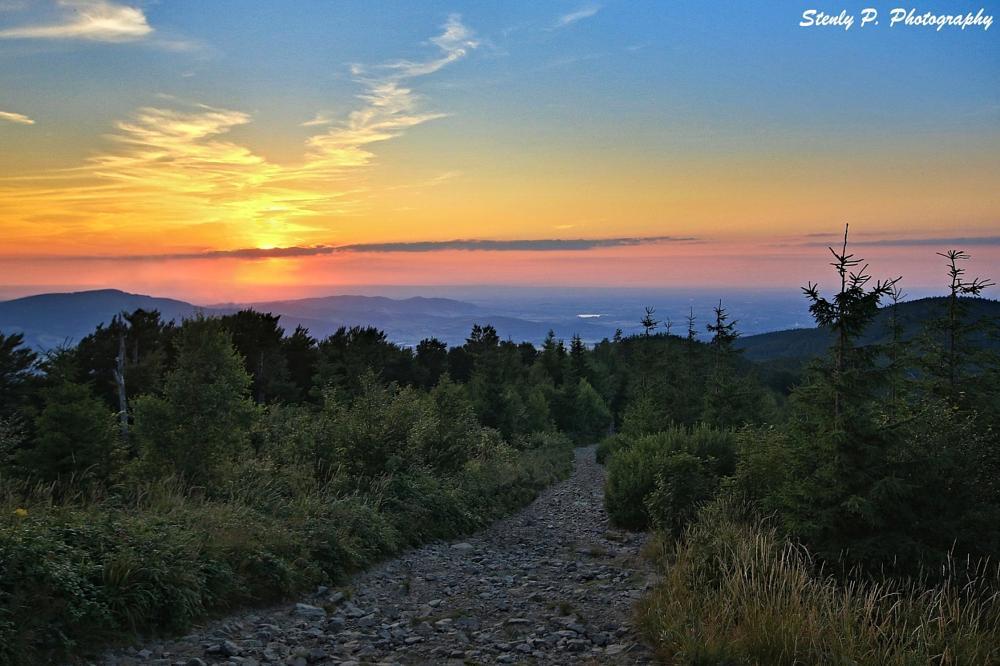 Photo in Landscape #sunset #mountain #sun #forest