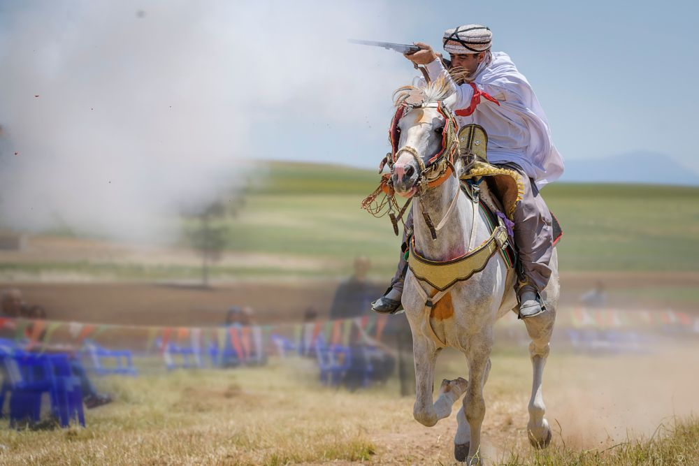 Photo in Sports #knight #arab #algerian #sport #riffle #horse #run