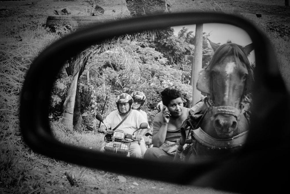 Photo in Street Photography #mirror #horse #woman #cellphono
