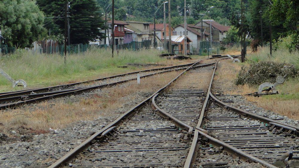 Photo in Random #la unión #chile #ferrocarril #paici cabezas #sony #región de los ríos
