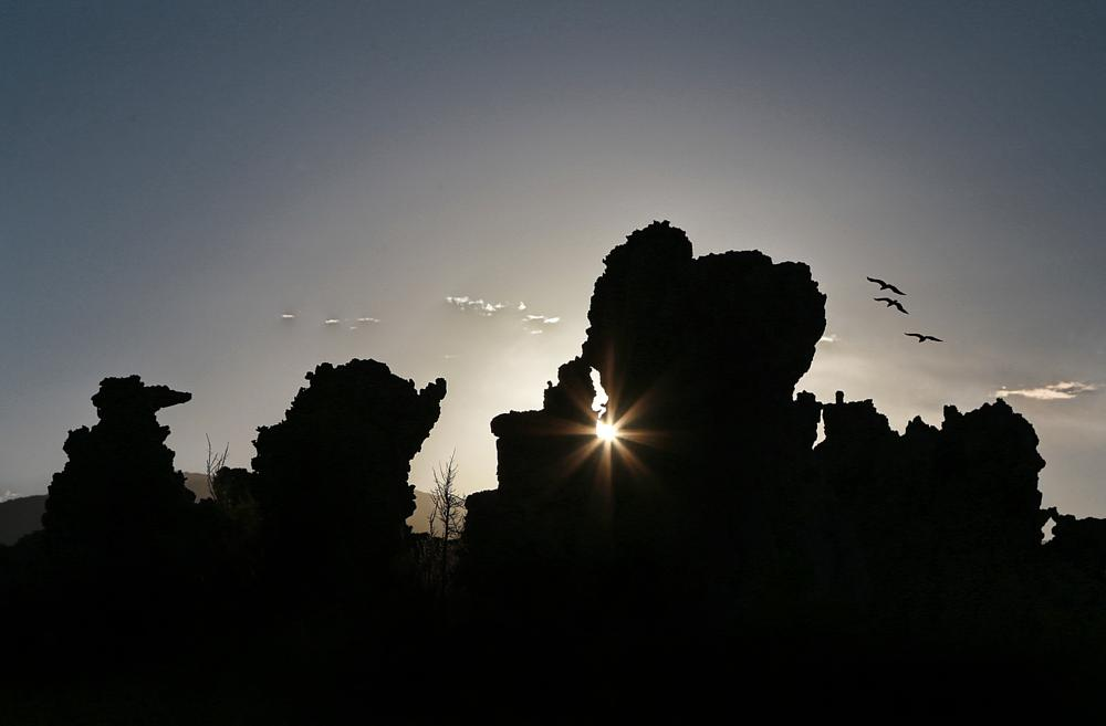 Photo in Landscape #tufa #mono lake #sunset