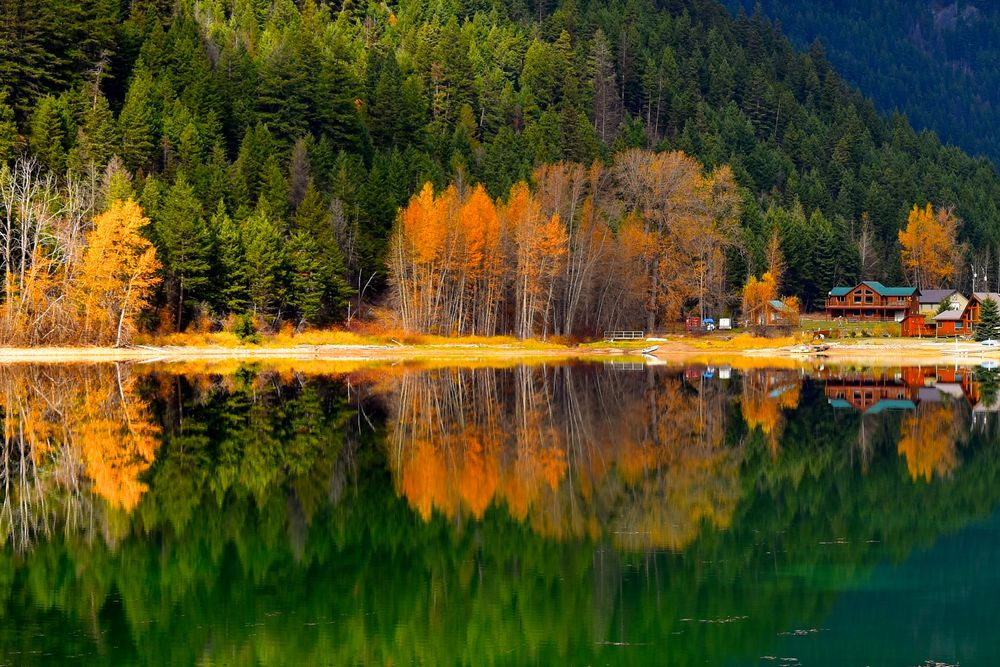 Photo in Landscape #fall #trees #colour #reflection #doubles