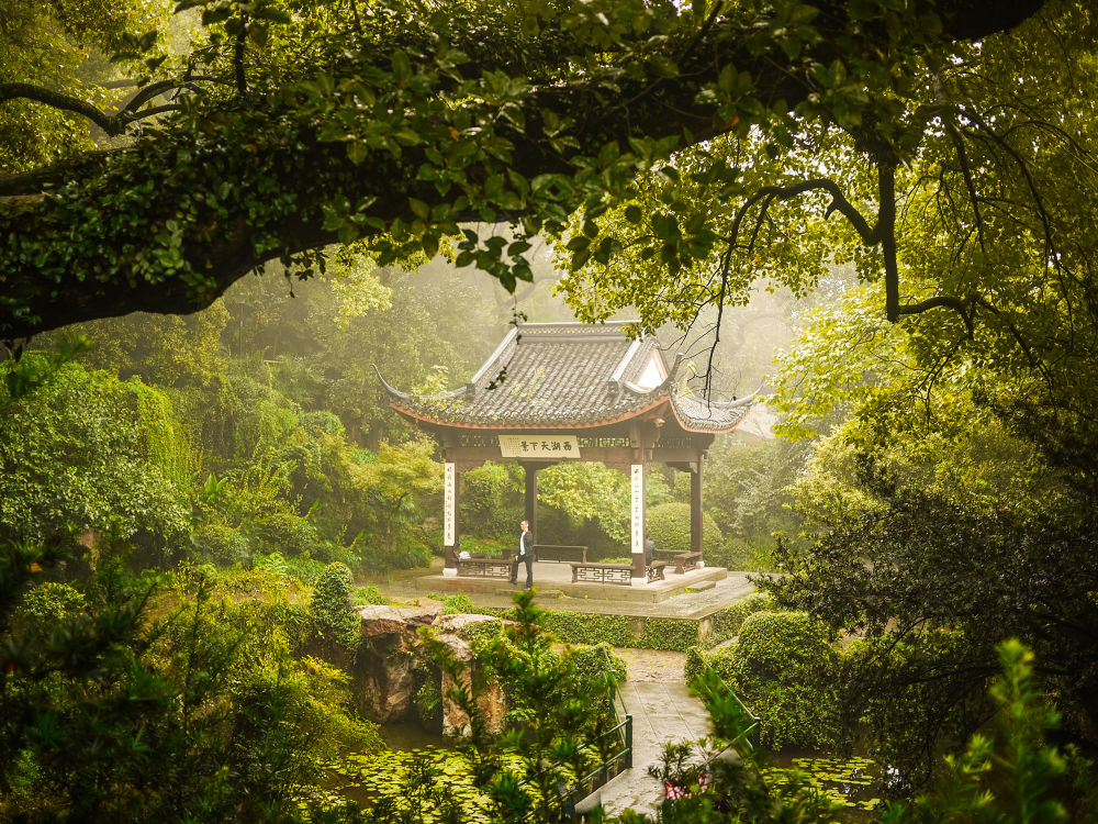Photo in Nature #temple #green #nature #tree #forest #china #religion #shrine #panasonic #lumix #gf1 #zhejiang #hangzhou #west lake