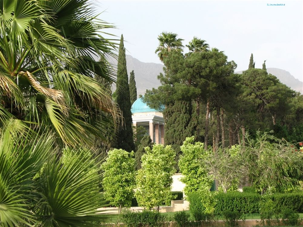 Photo in Random #saadi's #tomb