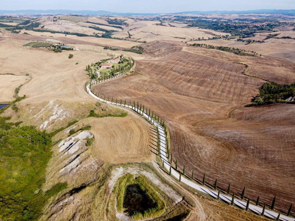 Photo in Aerial #drone #cypress #tree #trees #toscana #asciano #path #orcia #valdorcia