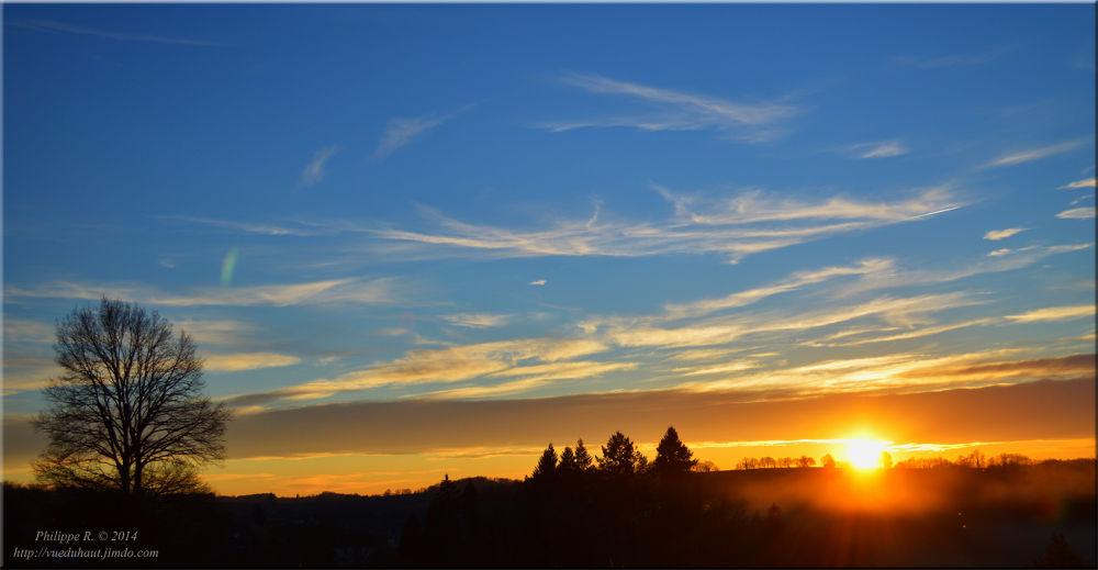 Photo in Nature #sunset #blue #sky #sun #smog #trees