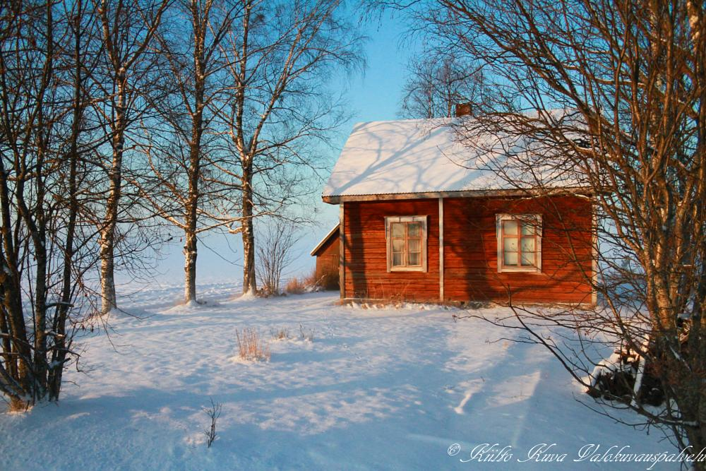 Photo in Nature #winter #house
