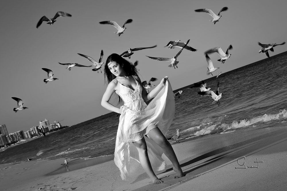 Photo in Black and White #bw #blackandwhte #seagulls #birds #beach #buildings #water #sand
