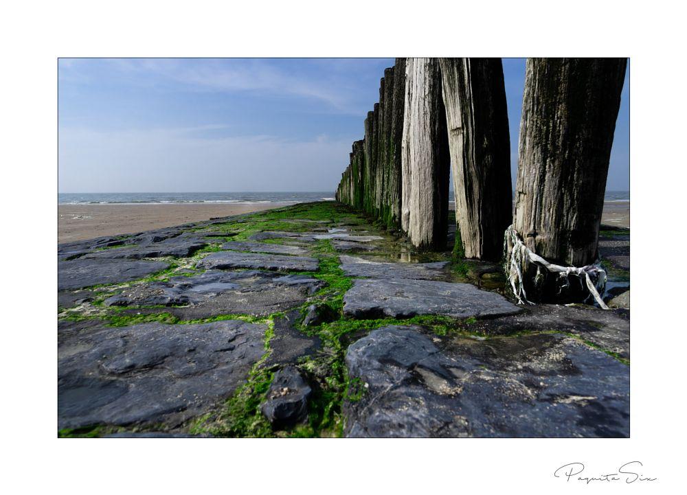 Photo in Landscape #breakwater #sand #sea #landscape #outerborder