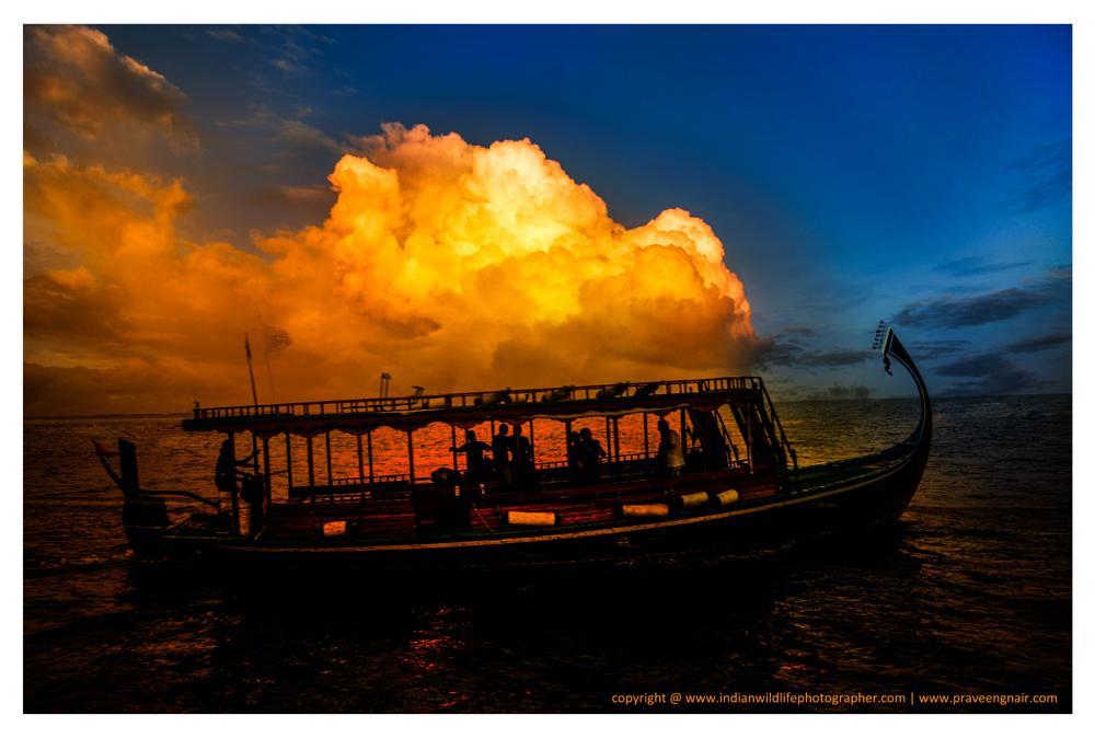 Photo in Landscape #andaman and nicobar #www.indianwildlifephotographer #www.praveengnair.com #india #praveen g nair