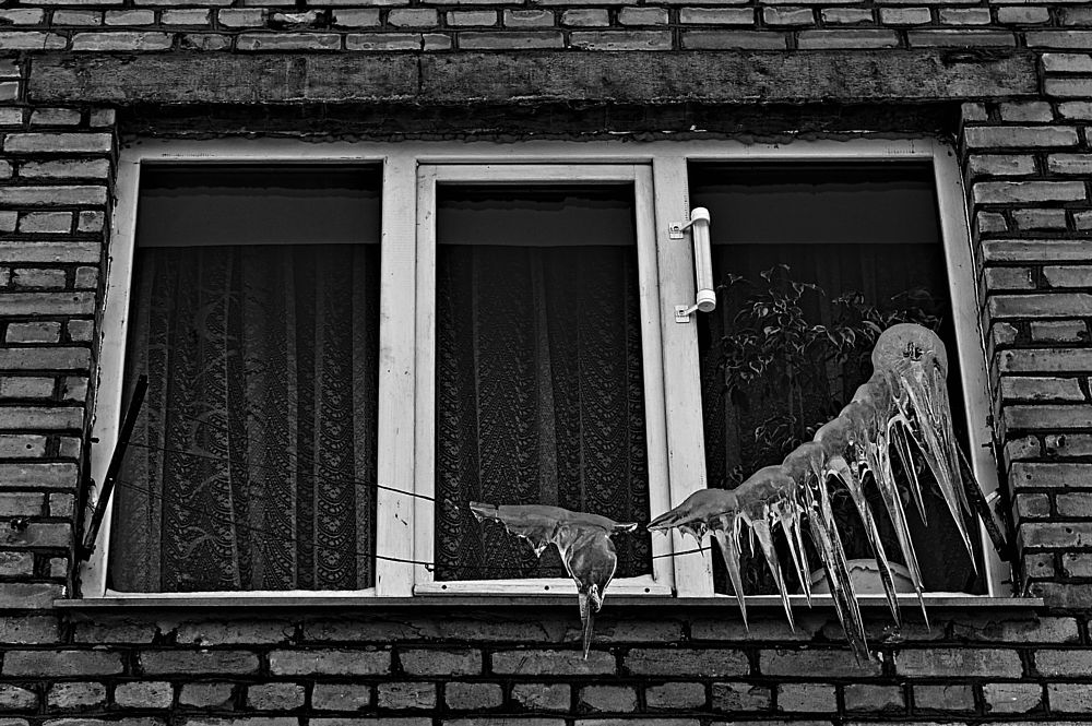 Photo in Black and White #winter #city #house #window #ice #bw #b&w world