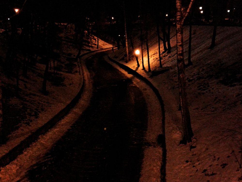 Photo in Cityscape #winter #winterscape #park #hills #road #tree #snow #lights #зима #вечер #парк #склоны #деревья #снег #дорога