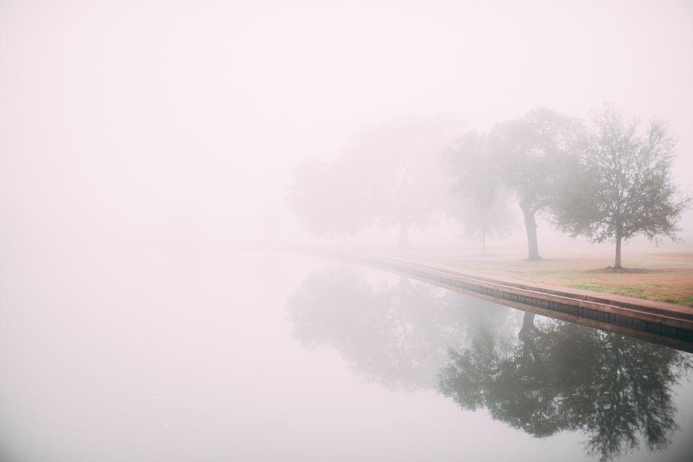 Photo in Landscape #landscape #fog #nature