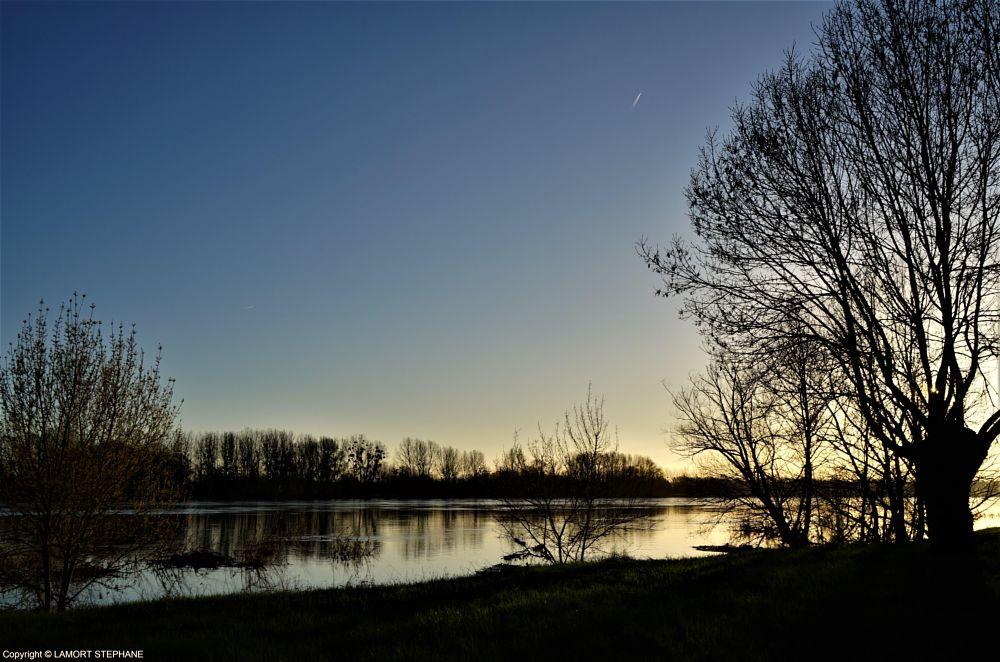 Photo in Landscape #loire #sainte gemmes sur loire #maine et loire #fleuve #tree #arbre #river