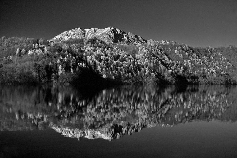 Photo in Random #d800 #24-70 #lake #trento