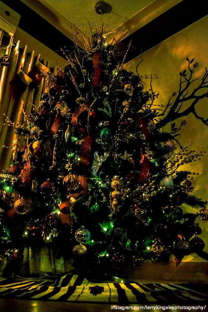 Photo in Random #tree #christmas #christmas tree #snow #theme #light