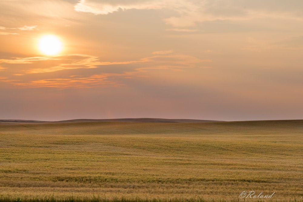 Photo in Landscape #plain #field #sunset #vastness #sky