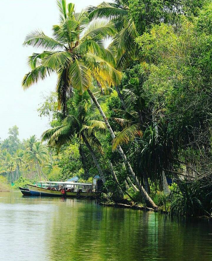 Photo in Landscape #landscape #reflections #kerala #india #nature