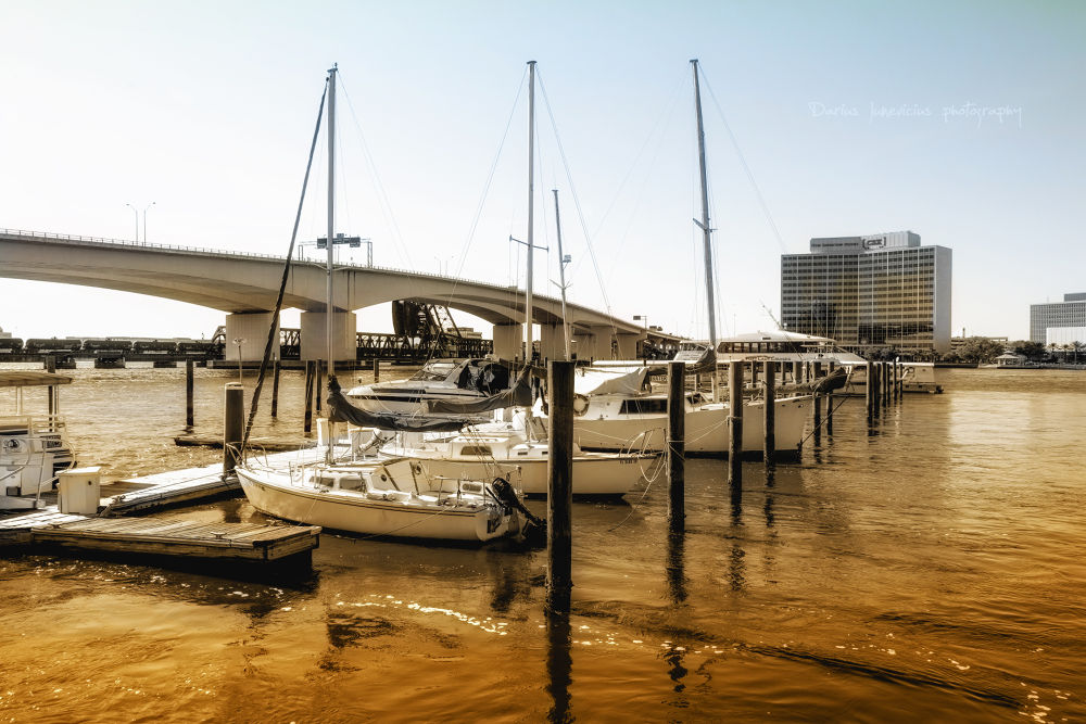 Photo in Cityscape #jacksonville #jundarphotography