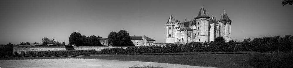Photo in Landscape #castle of saumur #castle #saumur