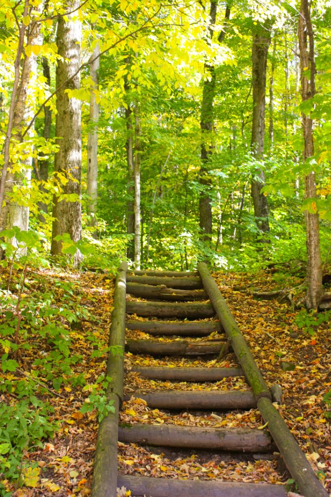 Photo in Landscape #stairway #hiking #mountains #landscape #catskill mountains