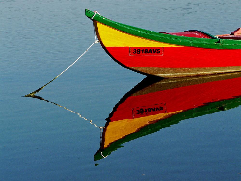 Photo in Random #barco bor marley