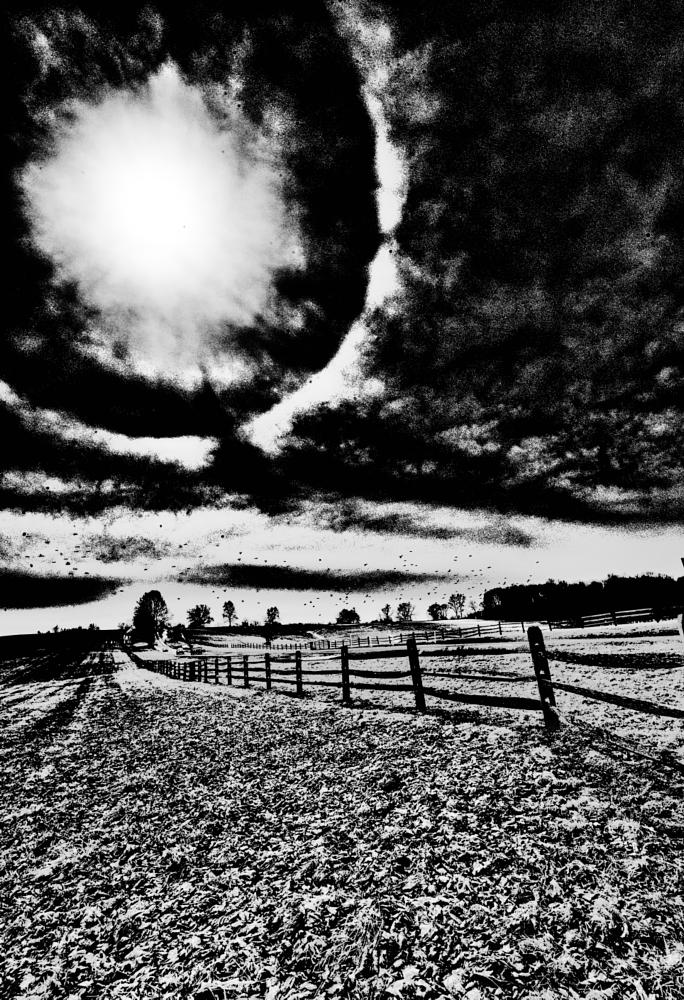 Photo in Black and White #chester county #black and white #farm