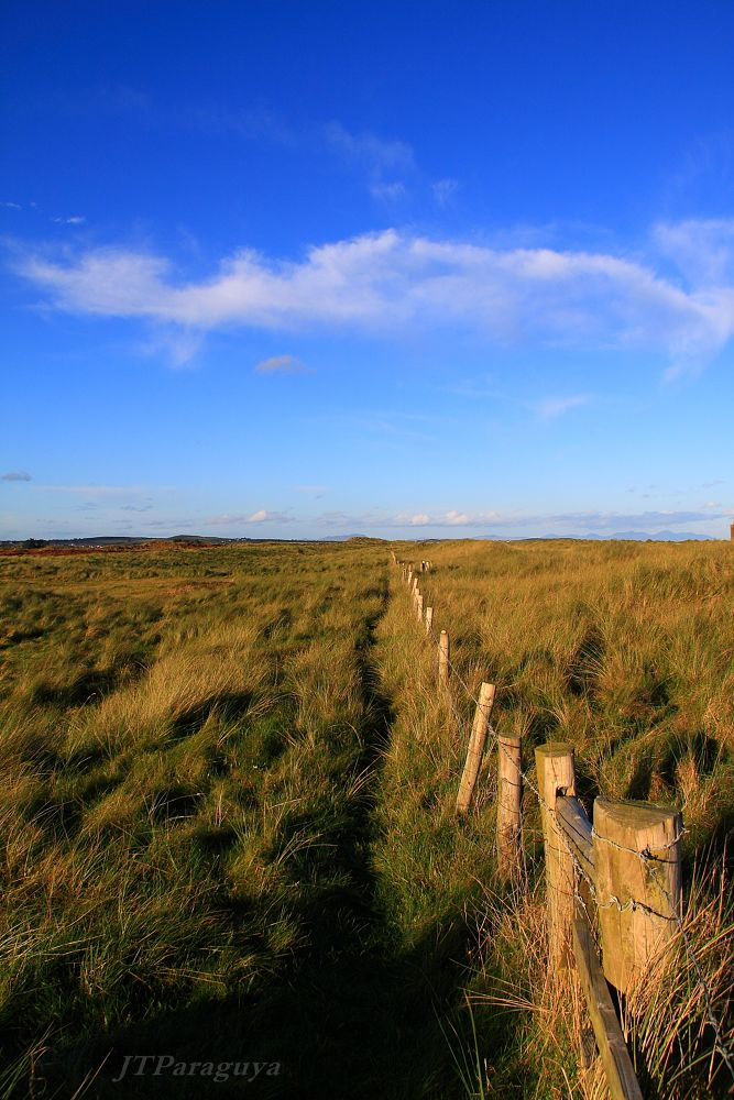 Photo in Landscape #ireland #lanscape #baltray #drogheda #louth