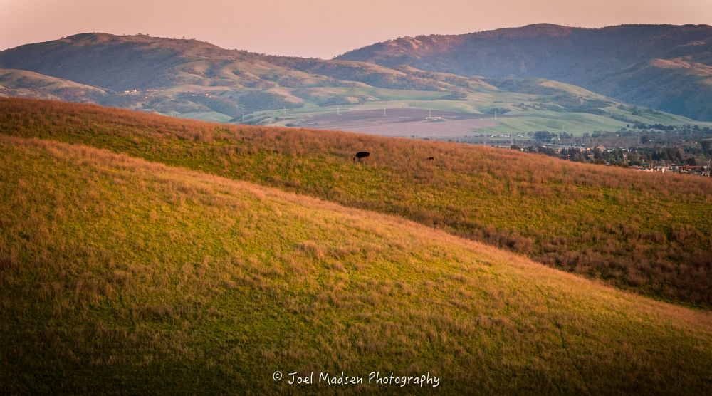 Photo in Landscape #california #sundown #landscape #warm #hills #grass #rural