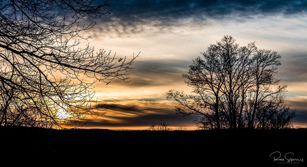 Photo in Landscape #sunrise #saturday #silhouette #tree #sky #morning