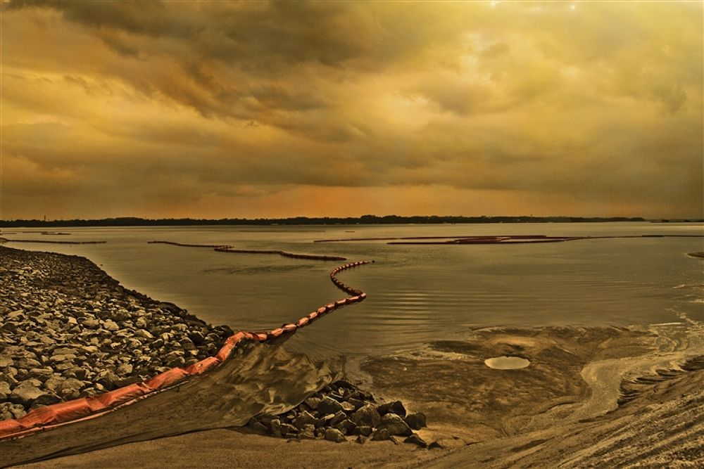 Photo in Random #beach #golden