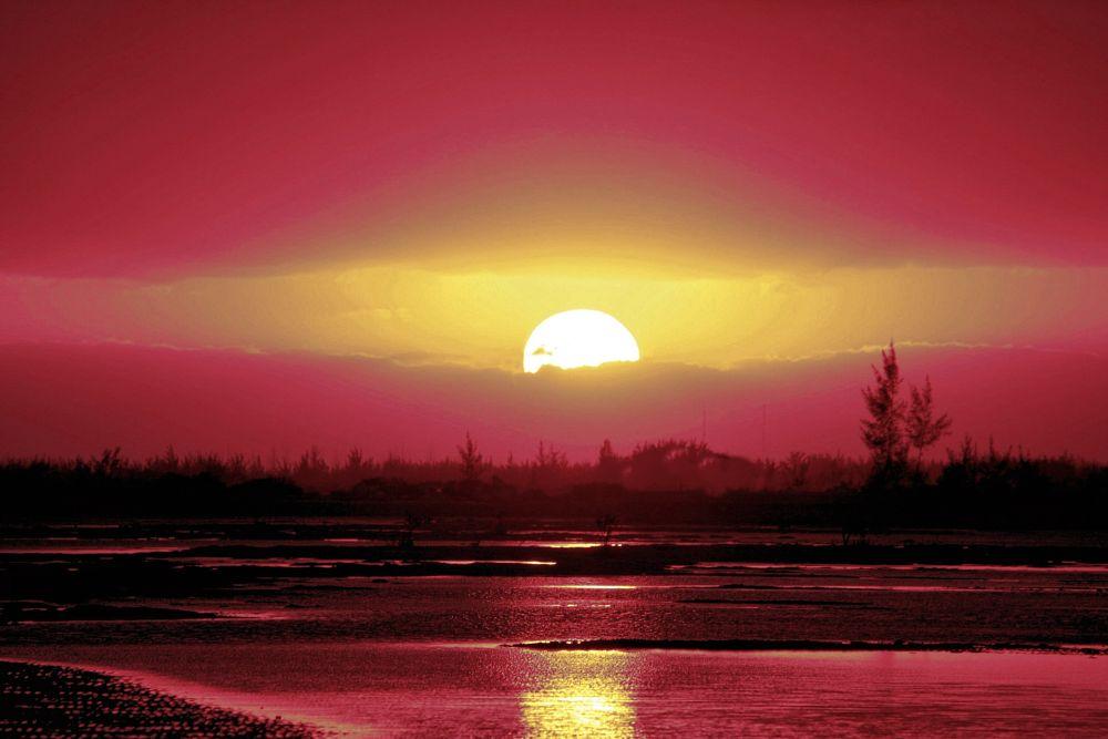 Photo in Random #sun #sunset #nature #sunlight