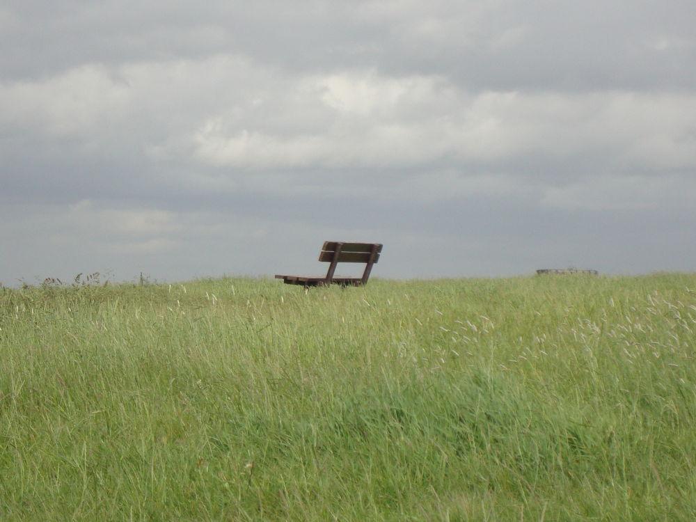 Photo in Random #london #park #nature #weather #uk #bench #england #united kingdom #hampstead #heath