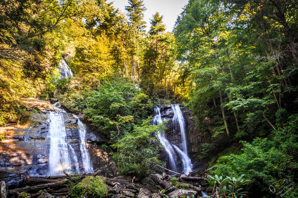 Photo in Landscape #anna ruby falls #chattahoochee mountains #northeastern georgia