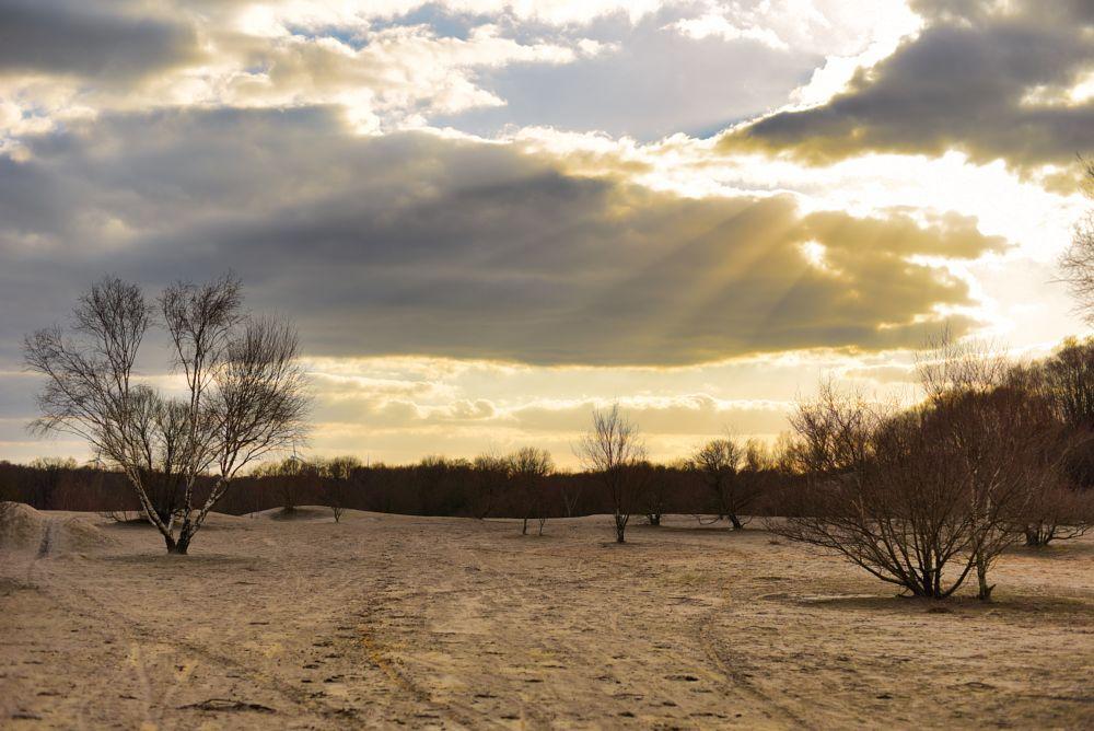 Photo in Random #nature #naturelover #naturepic #natureshot #lunar #nature photography #sunset #sunrays #clouds #cloudy sky #landscape #landscape photography #trees #treelover #abbaretz #terril #loire atlantique #44