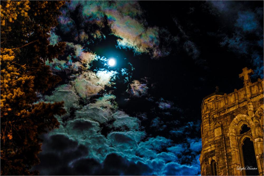Photo in Random #under the moonlight ...